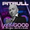 Pitbull - I Feel Good (feat. Anthony Watts & DJWS)  artwork