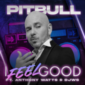 Pitbull - I Feel Good (feat. A...