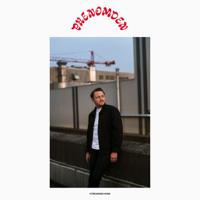 Streunendi Hünd Mp3 Songs Download