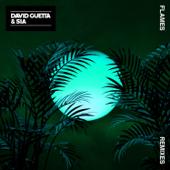 Flames (Sylvain Armand Remix) - David Guetta & Sia