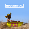 They Don't Care About Us (feat. Maverick Sabre & YEBBA) - Rudimental