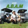 ADAAM - A.D.A.M bild
