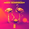 Need Somebody (feat. Lola Rhodes)