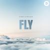 Vinny & Nelson - Fly artwork