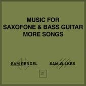 Sam Gendel - Theem Prototype