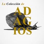 Alban Berg Quartett - String Quartet No. 3 in B Flat Major, Op.67: II. Adagio