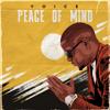 Voice - Peace of Mind artwork