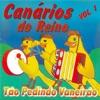 Tão Pedindo Vaneirão, Vol. 01