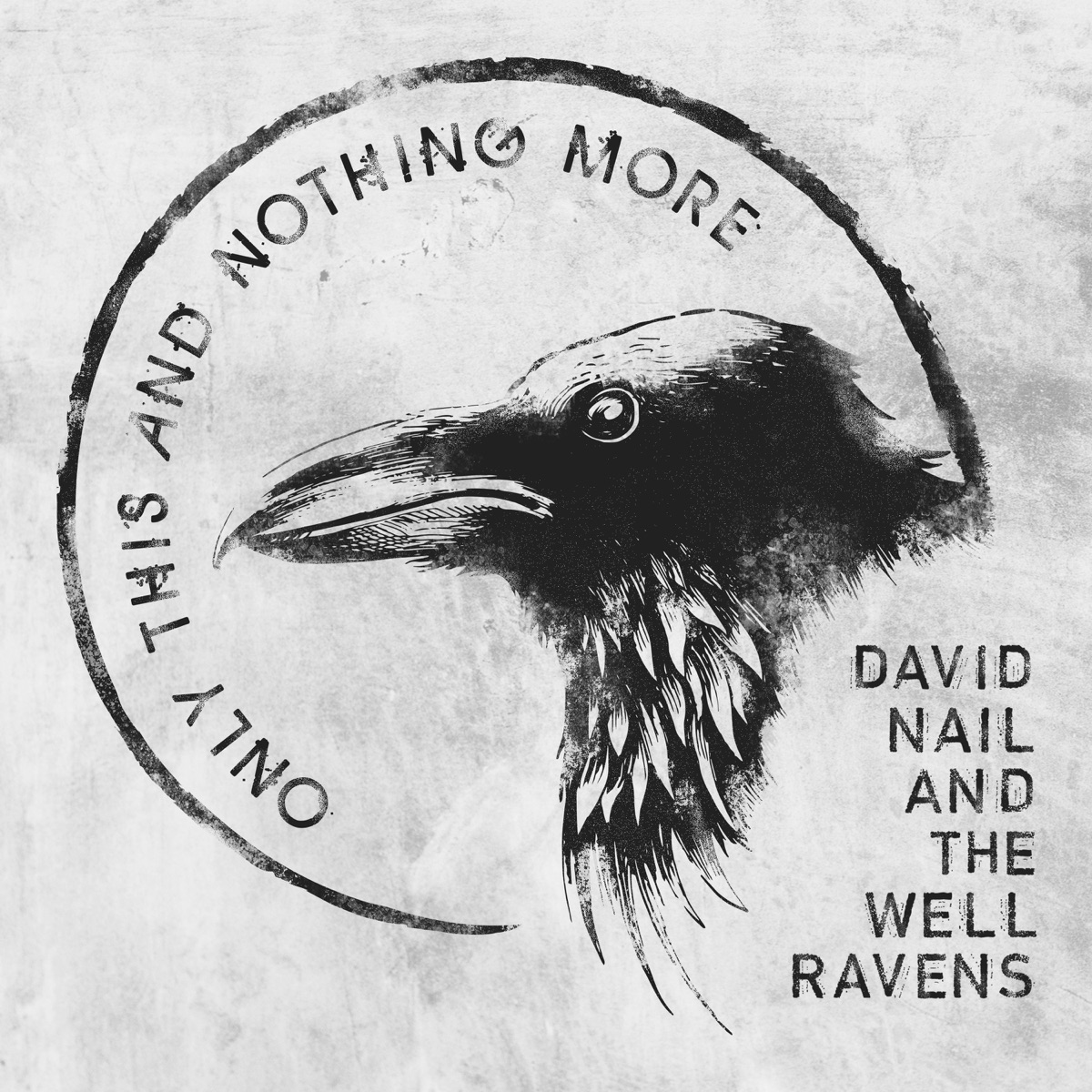 Only This and Nothing More David Nail and The Well Ravens CD cover