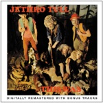Jethro Tull - Some Day the Sun Won't Shine for You