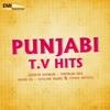 Punjabi TV Hits