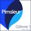 Pimsleur - Ojibwe Phase 1, Unit 16-20: Learn to Speak and Understand Ojibwe with Pimsleur Language Programs  artwork