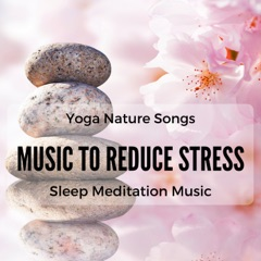 Music to Reduce Stress, Nature Sounds, Rainforest, White Noise, Sleep Meditation Music, Relax, Yoga Songs