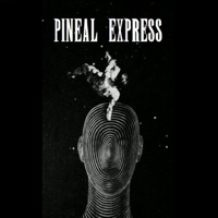Podcast cover art of Pineal Express