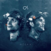 Camo & Krooked - Mandala (feat. Mefjus)