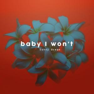 Baby I Won't - Single Mp3 Download