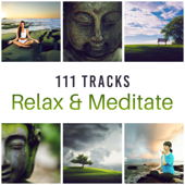 111 Tracks: Relax & Meditate – Relaxing & Healing Sounds, Asia Zen Spa, Keep Calm, Chill, Massage, Yoga World