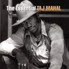 The Essential Taj Mahal - Taj Mahal