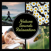 Nature Sounds Relaxation – Total Tranquility, Morning Meditation, Inner Power, Blissful Sleep Therapy, Spa & Wellness
