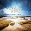 Reducing Stress - Calming Water Consort & Zen Meditation Music Academy