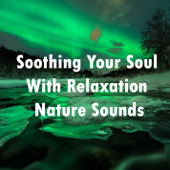 Soothing Your Soul with Relaxation Nature Sounds - EP
