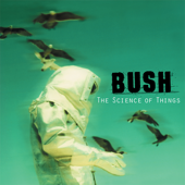 The Chemicals Between Us (Remastered) - Bush