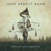 Im Your Only Flaw-Josh Abbott Band