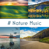 # Nature Music: 50 Tracks of Relaxing Nature Ambient, Meditation, Sleep & Wellness - Relaxing Nature Sounds Collection, Meditation Music Zone & Calming Water Consort