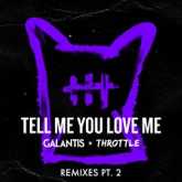 Tell Me You Love Me (Remixes, Pt. 2) - Single
