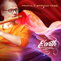Praful - Earth Tones (feat. Spirited Tribe) artwork
