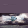 Modest Mouse - Gravity Rides Everything bild