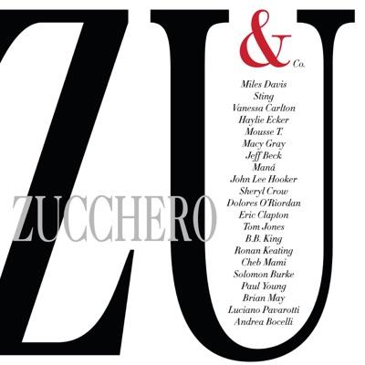Zu & Co. - Zucchero