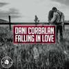 Dani Corbalan - Falling in Love artwork