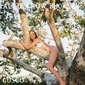 Allie Crow Buckley - Cusco