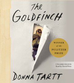 The Goldfinch - Donna Tartt MP3 Download