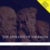 Plato - The Apology of Socrates  artwork