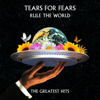 Tears for Fears - Rule the World: The Greatest Hits Grafik