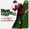 David Campbell - Baby It's Christmas artwork