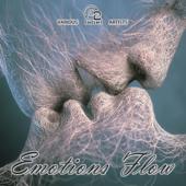 Emotion Flow