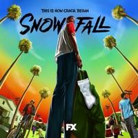 Télécharger Snowfall, Saison 1 (VOST) Episode 3