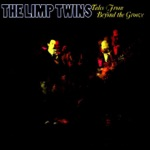 The Limp Twins - Another Day in the Life of Mr. Jones