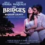 Steven Pasquale - It All Fades Away