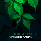Guided Relaxation with Nature Sounds: Amazing Sounds of Rain, Birds, Woodland & Ocean, Soothing Music for Mind, Body & Soul, Feeling Peace & Serenity