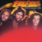 Tragedy Bee Gees