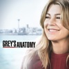 Grey's Anatomy, Season 15 wiki, synopsis
