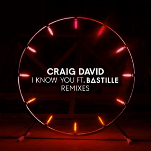 I Know You (feat. Bastille) [Remixes] - EP Mp3 Download