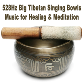 [Download] The Ancient Healing Path of 528Hz MP3