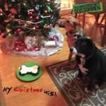 Ted Drozdowski's Scissormen - My Christmas Wish