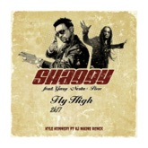 Fly High 2k17 (feat. GARY PINE & RJ MAINE) - Single