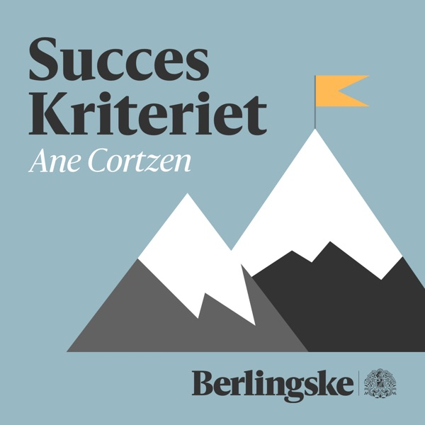Succes Kriteriet